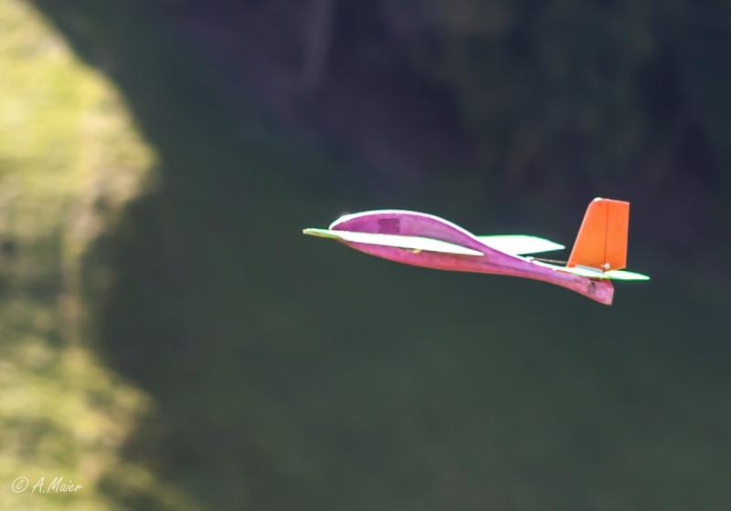 2016 Hangflug MSV Froburg-3459