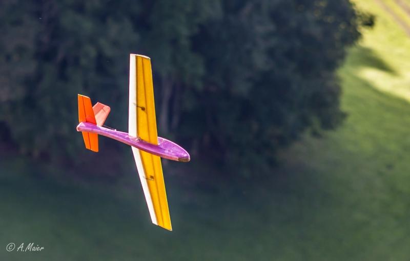 2016 Hangflug MSV Froburg-3468