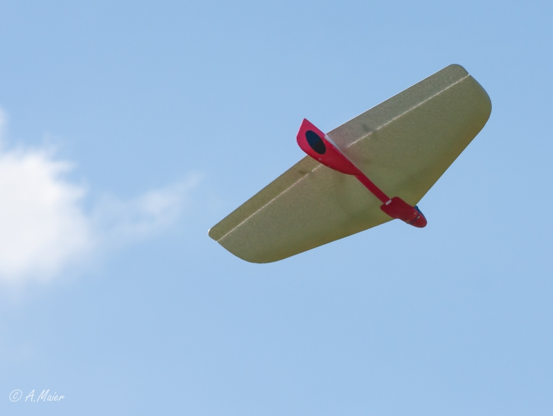 2016 Hangflug MSV Froburg-3616